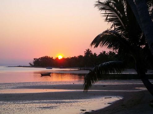 马达加斯加雨林,海岛生态之旅